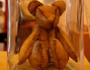 Placenta Teddy